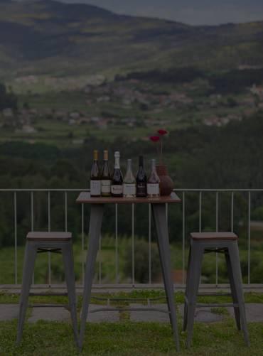 fusion-wine-tasting-experience