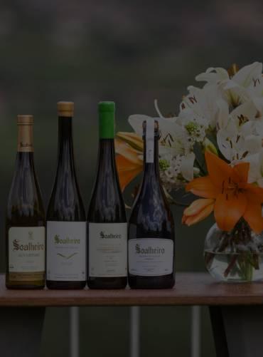 nature-wine-tasting-experience