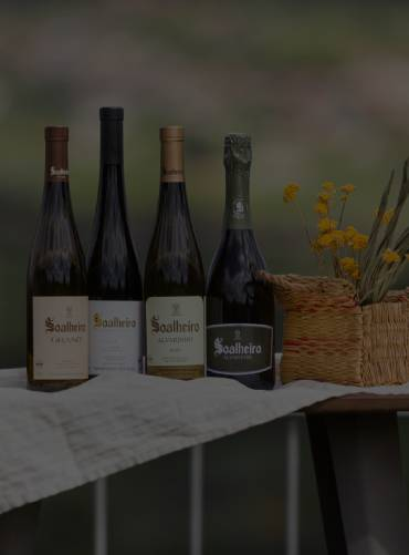 origins-wine-tasting-experience